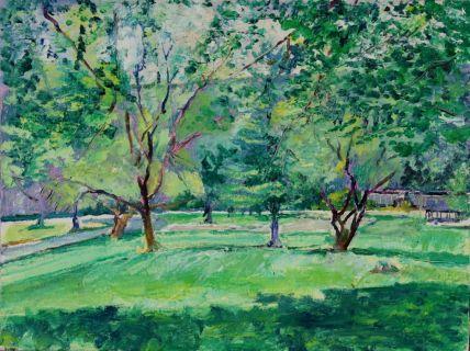 Plein Air Painting of Indian Foothills Park, Marshall Missouri